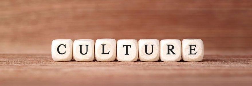 Blog culture