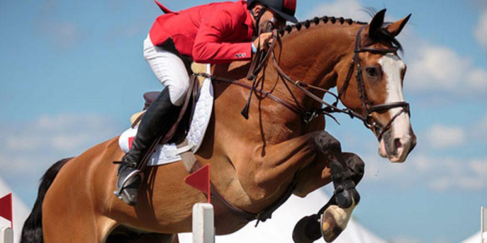 Comment faciliter la pratique des sports équestres ?