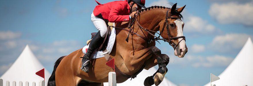 Pratique des sports équestres